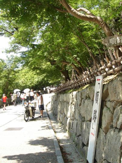 Kiyo_wall